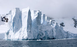 рай ледника залива Стоковые Изображения RF