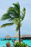 рай Мальдивов, котор нужно приветствовать стоковое фото rf