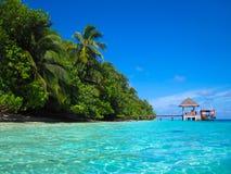 рай Мальдивов тропический Стоковое Изображение