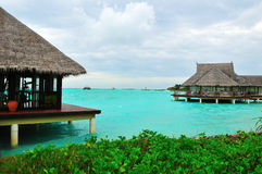 рай Мальдивов, котор нужно приветствовать Стоковое Фото