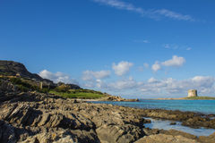 Рай моря Стоковые Фото