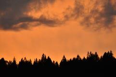 Рай на огне стоковое изображение