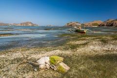 Рай на пляже lombok, Индонезии Стоковое Изображение