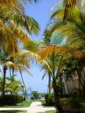 Рай ожидает 2 Стоковая Фотография RF
