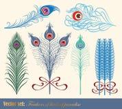 рай пер птиц иллюстрация вектора