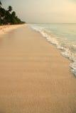 рай пляжа Стоковые Фото