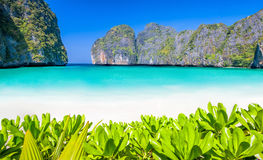 Рай пляжа лагуны Стоковое Изображение