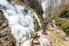Рай Словакии - каньон реки Sucha Biela с туристским путем Пеший туризм в каньоне реки, лесные деревья на сторонах Beautif стоковое фото rf