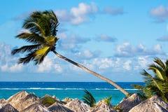 рай тропический Стоковая Фотография RF
