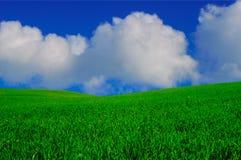 рай Стоковое Изображение