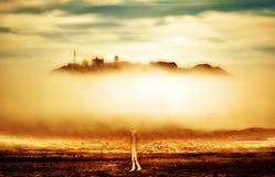 рай rd Стоковые Изображения