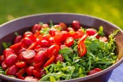 Ракета и томаты подготовленные для салата Стоковые Фотографии RF