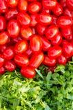 Ракета и томаты Стоковые Изображения