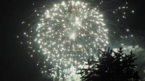 Ракета фейерверков красочная акции видеоматериалы