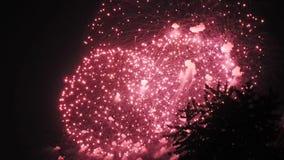 Ракета фейерверков красочная сток-видео