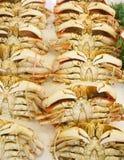 Раки в рынке продуктов моря стоковые изображения
