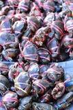 Раки в рынке. стоковое фото