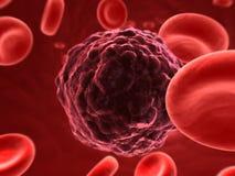 раковая клетка Стоковое фото RF