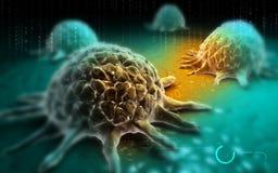 Раковая клетка Стоковые Изображения