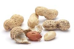 раковина арахиса Стоковые Фото