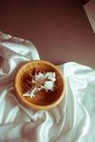 Раковина в шаре на белом шелке Стоковые Изображения