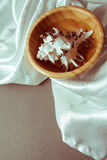 Раковина в шаре на белом шелке Стоковое Фото