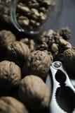 Раковина гайки Щелкунчика грецкого ореха Стоковое Фото