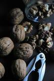 Раковина гайки Щелкунчика грецкого ореха Стоковые Изображения RF
