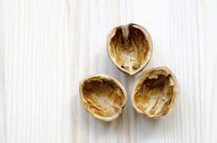 Раковина грецких орехов Стоковые Фотографии RF