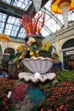 Раковина жемчуга в подводном саде Bellagio Стоковые Фото