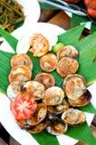 раковина зажженная рыбами Стоковые Фото