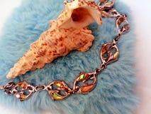 раковина и браслет моря Стоковые Фотографии RF