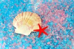 Раковина и звезда на соли моря Стоковая Фотография