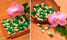 Раковина кокоса, капсулы, таблетки, цветок орхидеи Стоковые Фотографии RF
