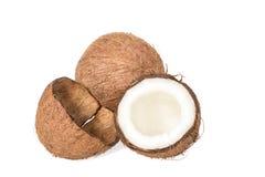 раковина кокоса пустая Стоковые Изображения