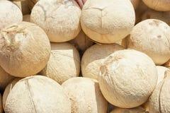 раковина кокоса трудная s Стоковая Фотография RF