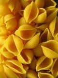 раковина макарон Стоковые Фото