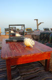 раковина моря компьтер-книжки Стоковые Фотографии RF