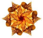 раковина моря мандала Стоковая Фотография