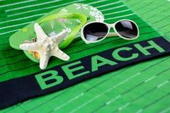 раковина моря океана принципиальной схемы пляжа предпосылки Стоковая Фотография