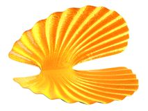 Раковина моря от золота иллюстрация штока