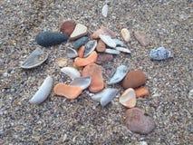Раковина на песке Стоковая Фотография