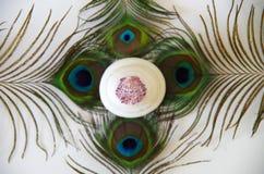 Раковина на утесах Стоковая Фотография RF