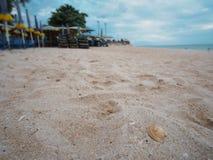 Раковина на Cha-был пляж, Таиланд Стоковая Фотография RF