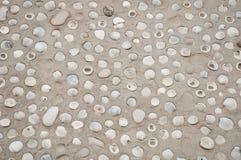 Раковина океана моря в картине песка пляжа Стоковые Изображения RF