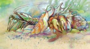 раковина омара Стоковое Фото