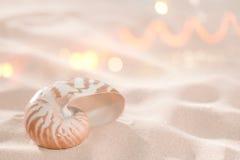 раковина песка nautilus пляжа Стоковые Фотографии RF