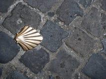 Раковина пути Сантьяго Стоковое Фото