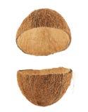 Раковина плодоовощ кокоса отрезанная в половине Стоковое Изображение
