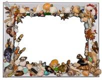 раковина рамки Стоковая Фотография